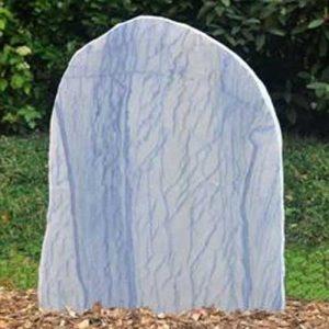 azul-macauba