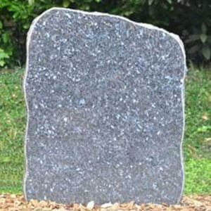 labrador-blue-gepolijst