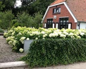 Gedenkstenen Zwolle