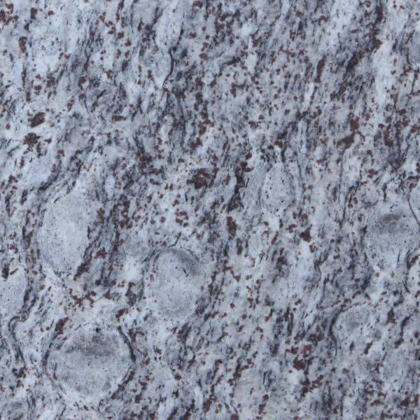 Lavendula graniet